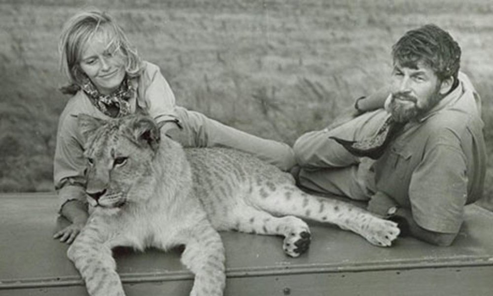 articles-virginia-mckenna-obe-on-how-travel-and-conservation-shaped-her-world.thumb.jpg.a74e5e2ca1fb2e8af412167c049d30e7.jpg